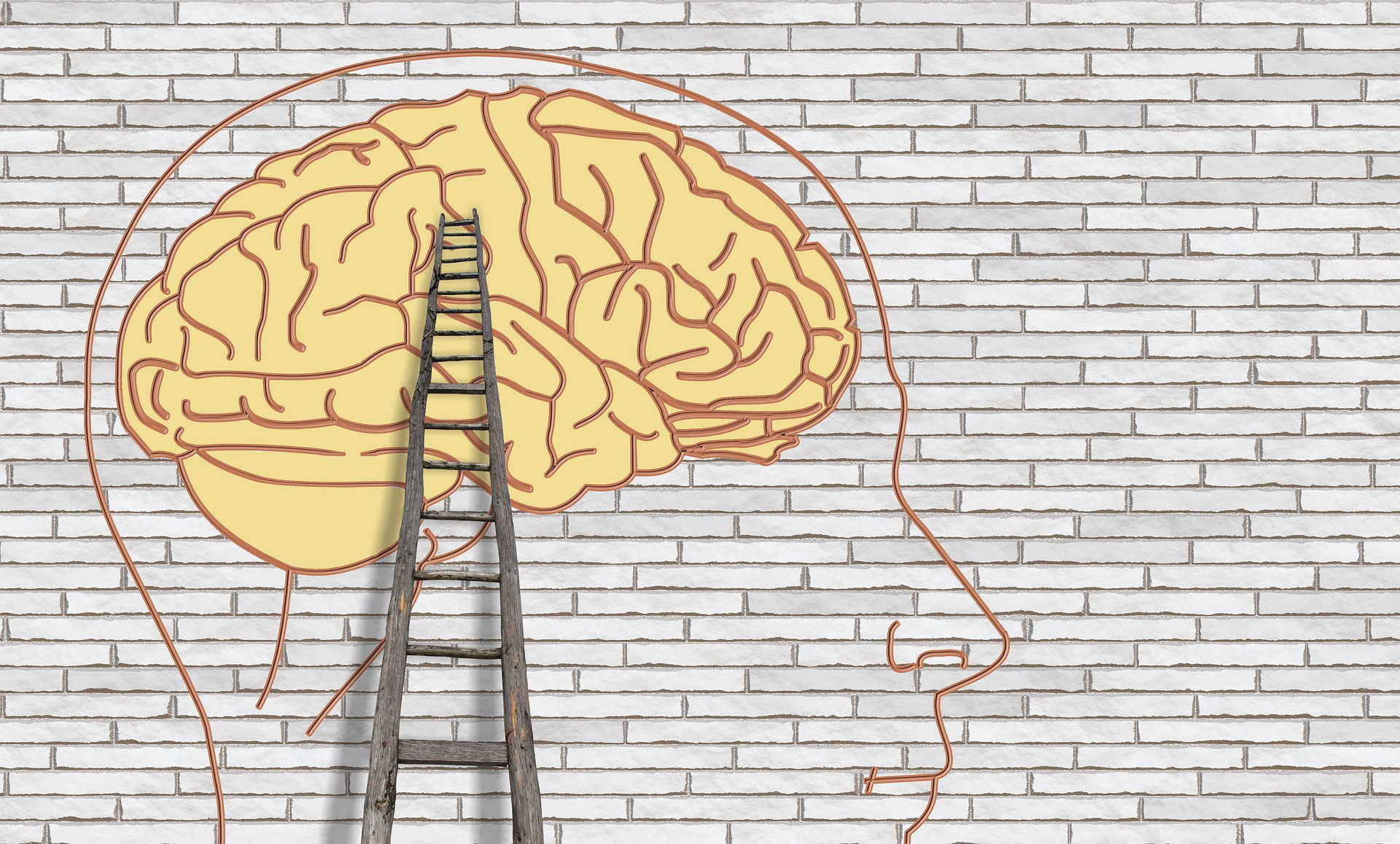 7 principles of neuroscience every coach and therapist should know