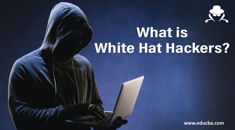 What is White Hat Hackers?